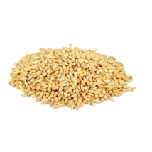 Simpsons Wheat Malt (búzamaláta)
